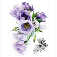 Стикери A&G 65x85 см, 1ч., рози