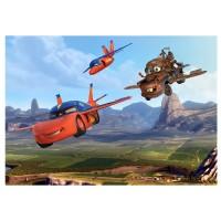 фототапет Disney стандарт 360х254/4ч Колите летят