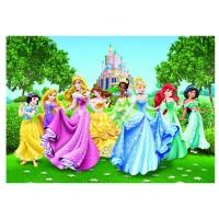 Фототапет Disney Стандарт 360x254 см, 4ч., принцеси